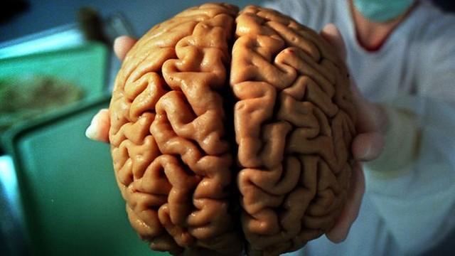 Giấc ngủ khoa học giúp não kích thích tiết hormone tăng trưởng