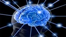 Những yếu tố như ham muốn tình dục, trí nhớ và năng lực trí não đều có thể không thay đổi nhiều trong độ tuổi 70- 80. Nhưng làm thế nào để được như vậy? Tham khảo 11 bí quyết giúp não chậm lão hóa dưới đây ngay nhé!