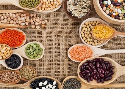 Các loại thực phẩm giúp tăng chiều cao nhanh chóng sẽ giúp bạn khắc phục nhược điểm về chiều cao. Ngoài ra, các loại thực phẩm này còn là nguồn cung cấp những dưỡng chất thiết yếu tạo nên một cơ thể khỏe mạnh.