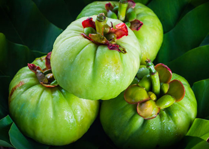 Theo một nghiên cứu của Dr. Oz, người Malaysia từ lâu đã biết dùng loại quả này phụ trợ kế hoạch giảm cân của mình. Người ta thường dùng nó trước bữa ăn để giúp tiêu thụ ít calo hơn.