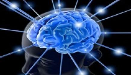 11 bí quyết giúp não chậm lão hóa