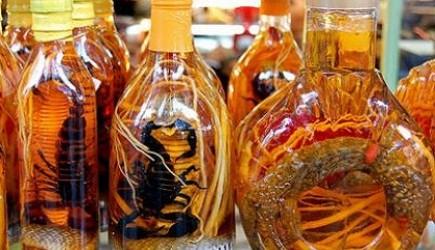 Cách ngâm những loại rượu giúp tăng cường sinh lý nam