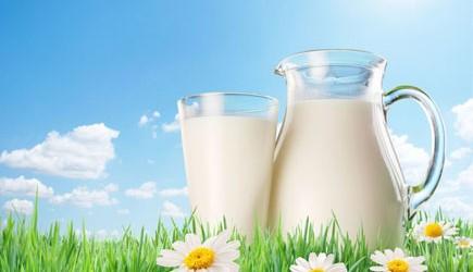 """Người """"ghét"""" sữa nên bổ sung Canxi bằng cách nào?"""