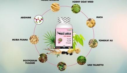 Phân tích tác dụng tối ưu của các dưỡng chất trong công thức của NUFALA