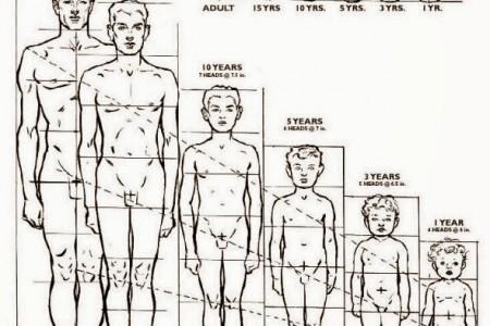 #5 Cách tăng chiều cao ở tuổi 15 ( 5-10cm trong 6 tháng)