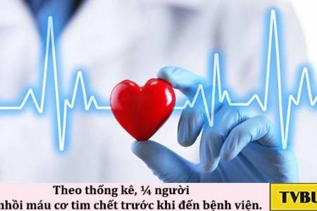 Làm sao để giảm mỡ máu và điều hòa Cholesterol?