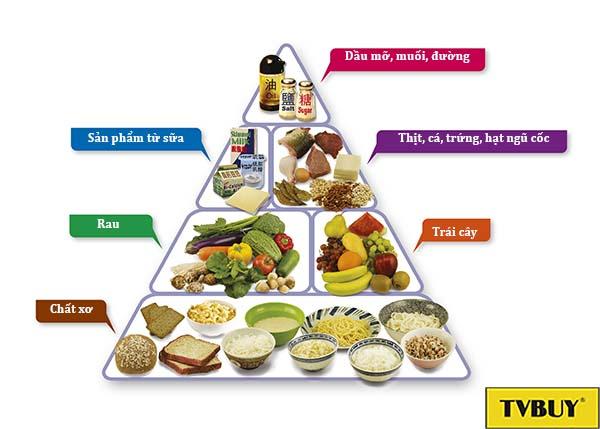 tháp cân bằng dinh dưỡng ở tuổi 25