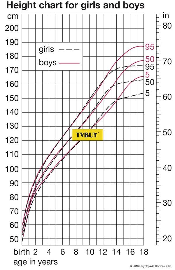 biểu đồ tăng trưởng chiều cao của nam và nữ