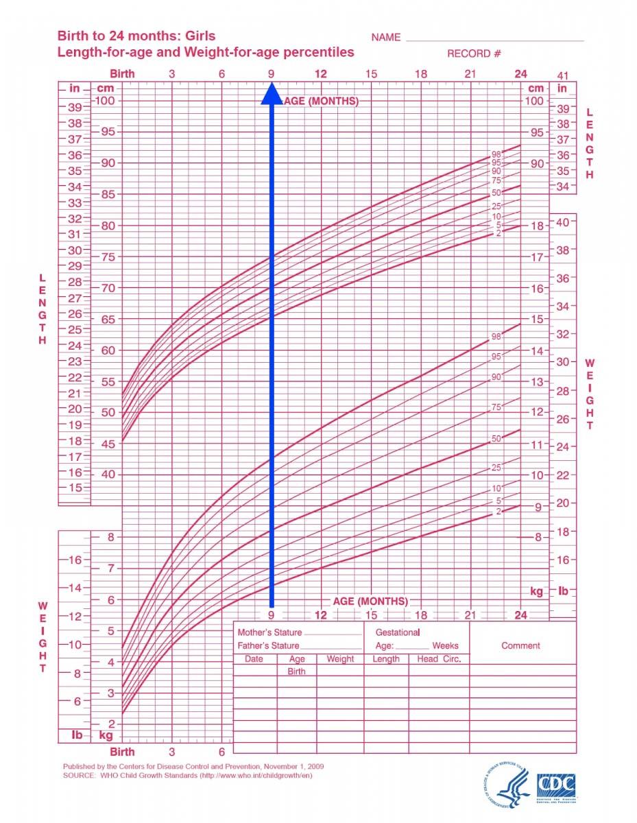 biểu đồ tăng trưởng của trẻ từ 0 đến 2 tuổi