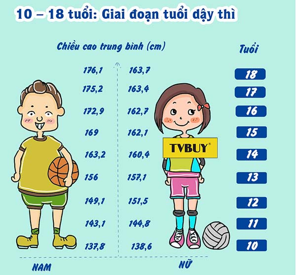 Bảng chiều cao cân nặng chuẩn của lứa tuổi dậy thì ở Việt Nam 10-18 tuổi