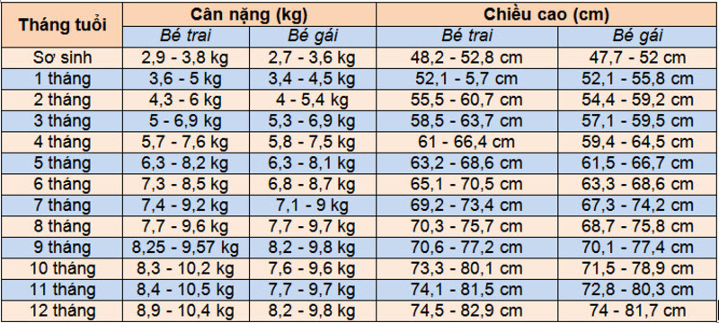 chiều cao cân nặng chuẩn của trẻ dưới 1 tuổi