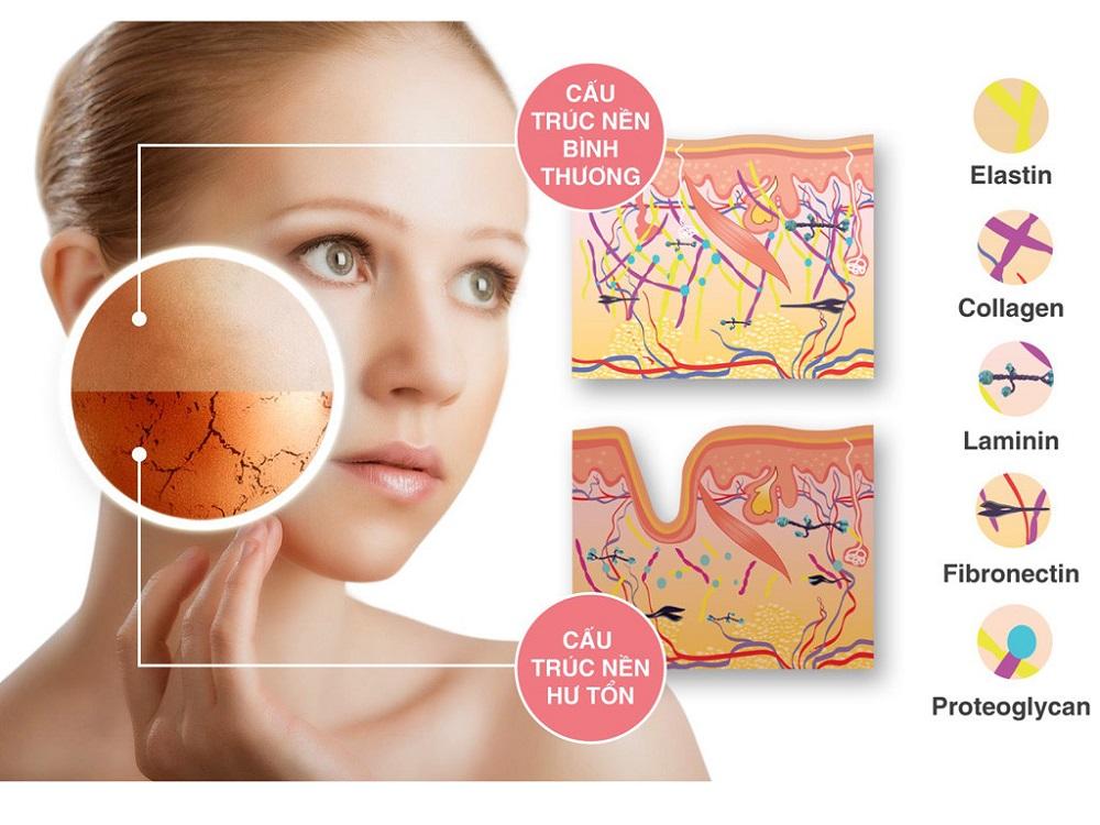 Mua collagen ở đâu là tốt giữa ma trận thực phẩm chức năng 01
