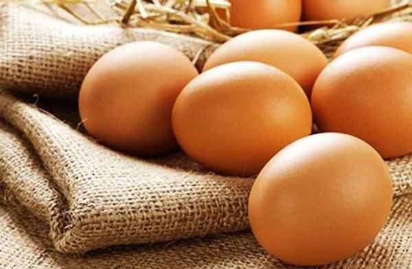 Phát hiện nhiều ca nhiễm dịch do ăn trứng gà nhiễm khuẩn tại Mỹ