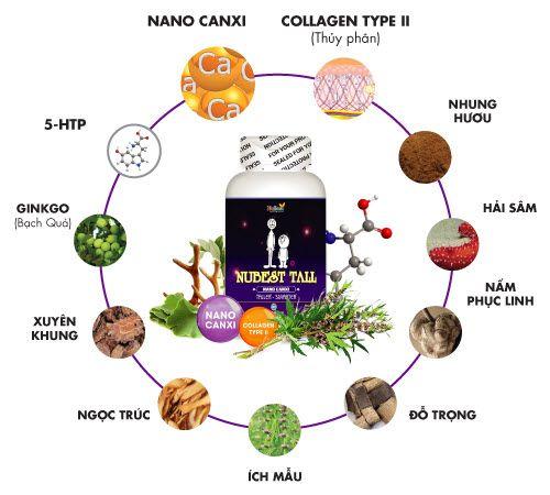 Thành phần thực phẩm chức năng thuốc tăng chiều cao cho tuổi dậy thì NUBEST TALL