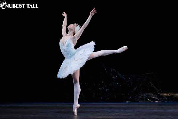 học múa