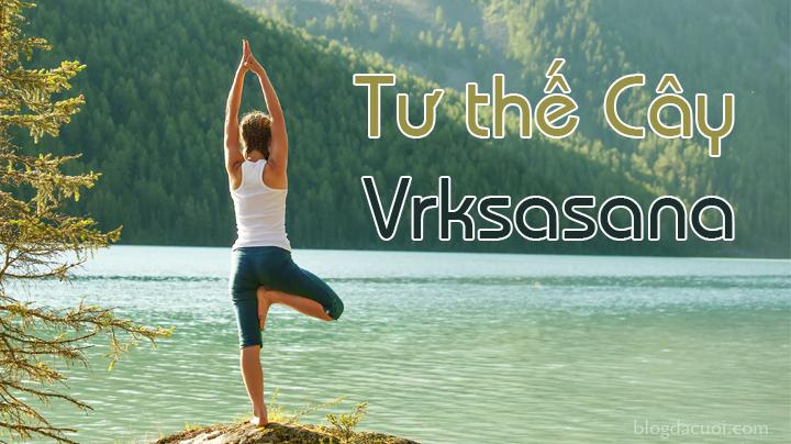 bài tập yoga tư thế Vriksh Asana