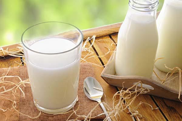 sữa tươi