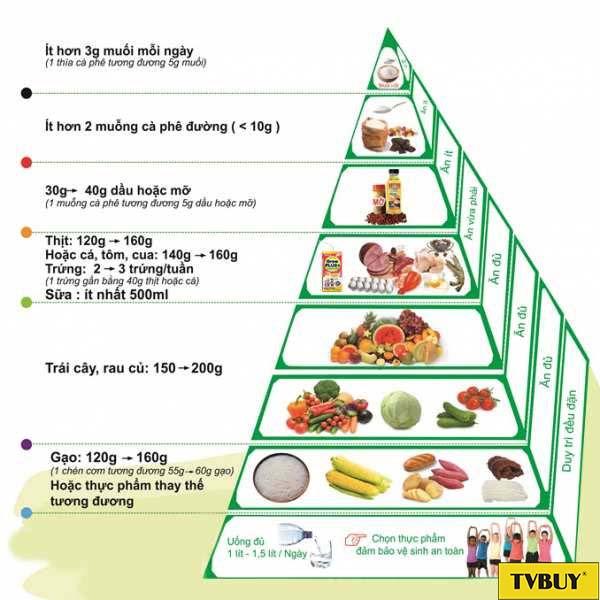 tháp cân đối dinh dưỡng