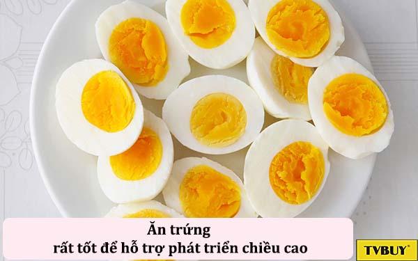 trứng thức ăn tăng chiều cao